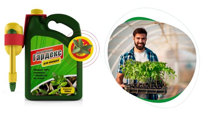 Биогербицид Гардекс защита от сорняков в Сочи